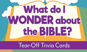 What Do I Wonder About The Bible? - Tear-Off Trivia Card Pack
